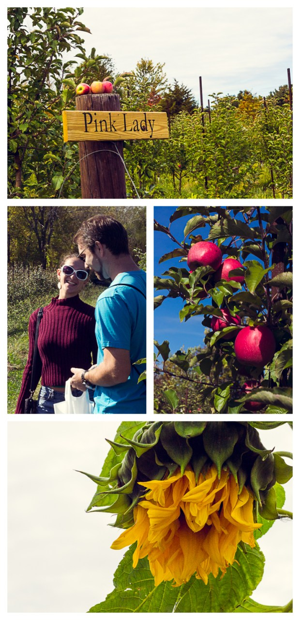frannycakes and friends went apple picking