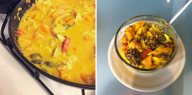 I used leftover rotisserie chicken to make a butternut squash and chicken curry.