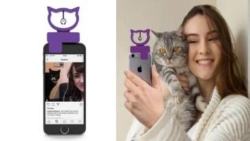 selfies com gatinhos