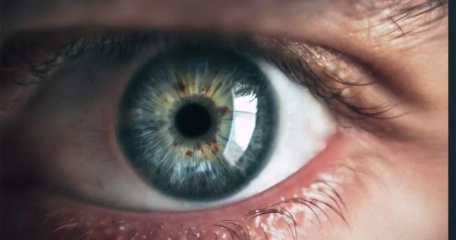 Curiosidades sobre os olhos e a visão incrível