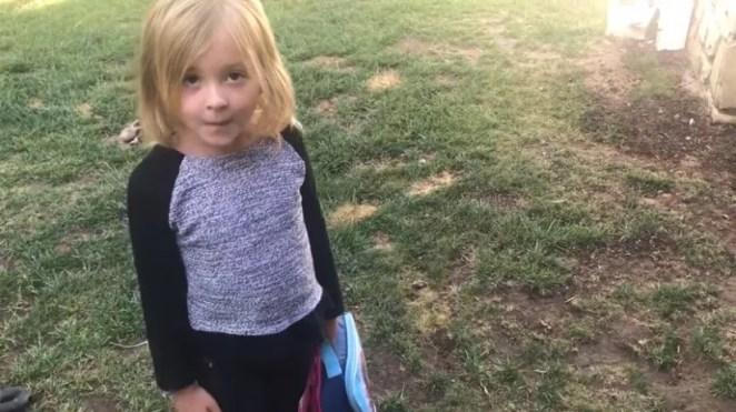 Garotinha vira advogada infantil para defender cachorro