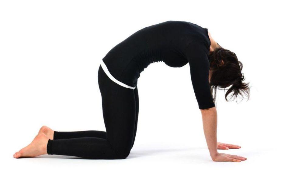 Postura del gato en yoga