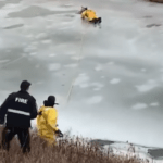VÍDEO: El conmovedor rescate de un perro que quedó atrapado en el hielo en Canadá