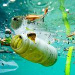 El Mar Negro. ¿Es posible salvarlo de la contaminación?