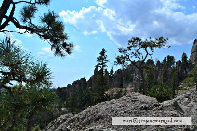 Travel with Kids to South Dakota, Visit Needles Highway, Family Travel, South Dakota