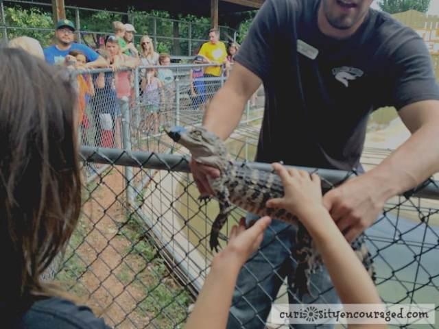 Travel with Kids to South Dakota, Visit Reptile Garden, Family Travel, South Dakota