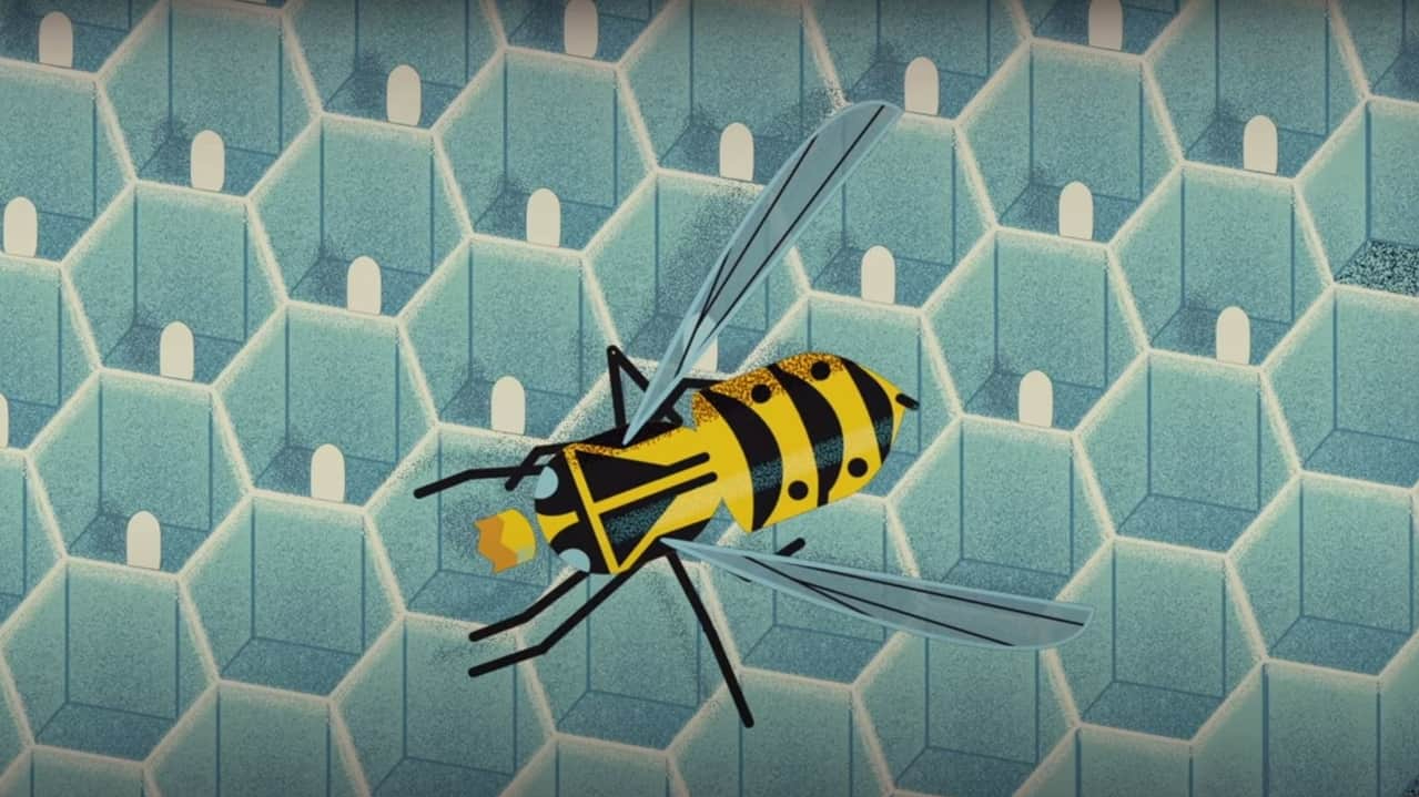 Wasp venom.Antimicrobial molecules using toxic proteins found in wasp venom.