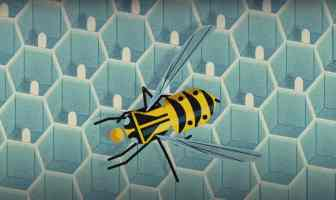 Wasp venom.Antimicrobial molecules using toxic proteins found in wasp venom.