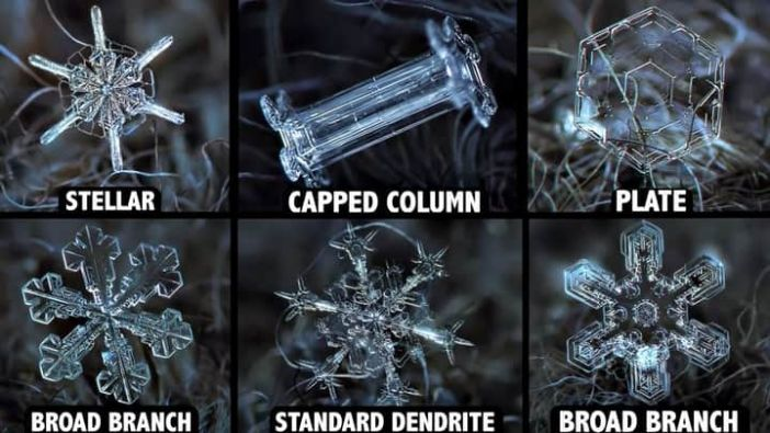 Snow crystals to categories.
