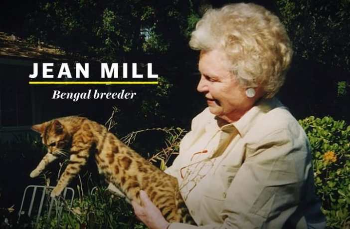 Jean Mill, the first American Bengal breeder.