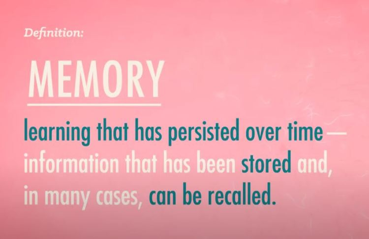 How memory works - Memory Definition.