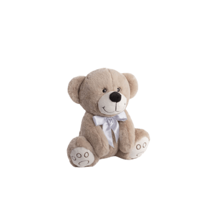 Alec The bear gift teddy