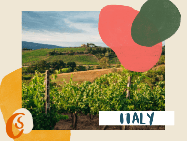 rolling hills and vineyards in Tuscany