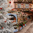 Colmar Christmas Market Guide and 2 Day itinerary
