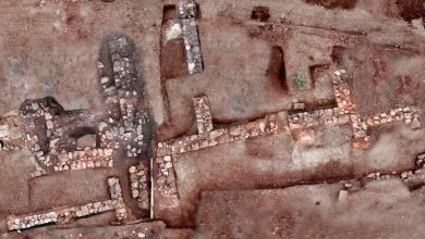 Aerial view of the archaeological site. Image Credit: Greek Ministry of Culture.