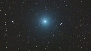 This image of Comet 46P/Wirtanen was snapped by astrophotographer John Hattenbach from La Palma, Spain. Image Credit: John Hattenbach.