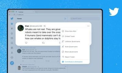 Twitter anuncia el lanzamiento de Birdwatch, una plataforma para detectar «tuits engañosos» con la colaboración de la comunidad