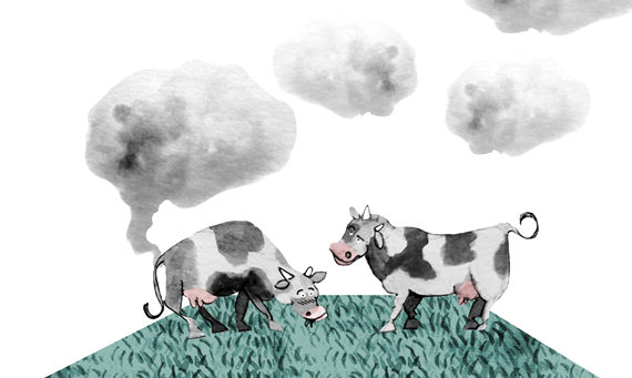 Debate: Are Farting Cows Killing Our Planet?