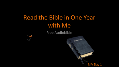Photo of Bible in a Year – New International Version – Downloadable MP3s