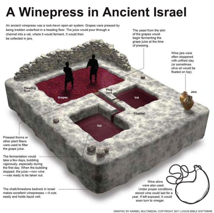 AWinepressInAncientIsrael