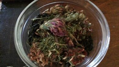 Photo of Herbal Recipe: Tea for Soothing Nausea