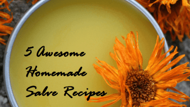 Photo of 5 Great Herbal Salves You Can Easily Make at Home