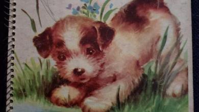 Photo of Playful Pets – A Bonnie Board Book – Circa 1947