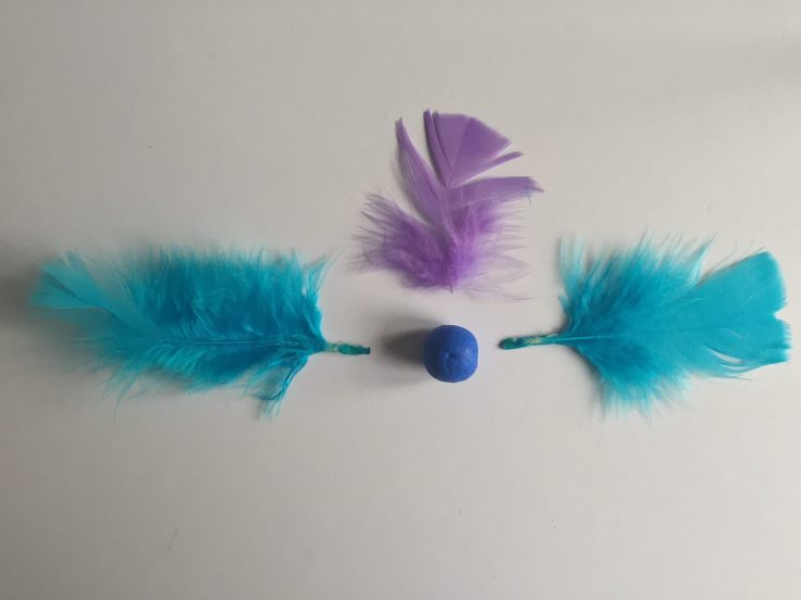 Feathered bird crafts for kids - Step 2