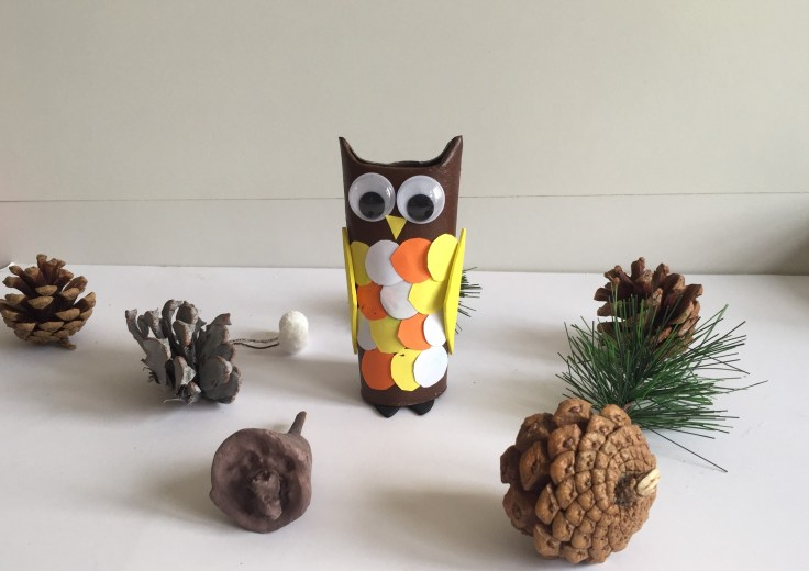 Toilet paper roll owls third model - Toilet paper roll owls - an Owlsome craft for kids
