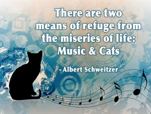 _music-and-cats-quote