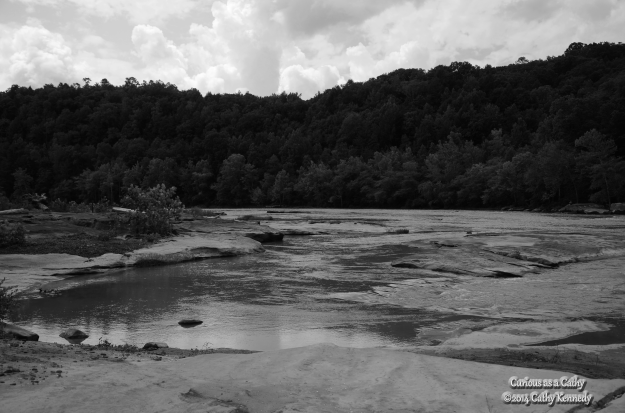 Same image, as above. Applied B&W effect to photo to share with other B&W weekend participators.
