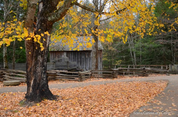Grist Mill at Cades Cove in the GSM