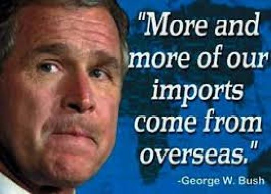 stupidthingspeoplesay~georgewbush