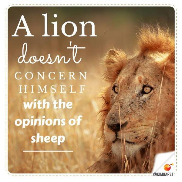 Lions don't concern itself