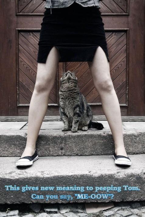 peekingtom2