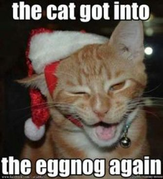 fs-12-23-2016-cat-got-in-the-eggnog
