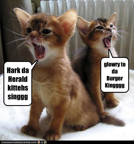fs-12-9-2016-hark-da-hearld-kittens-sing