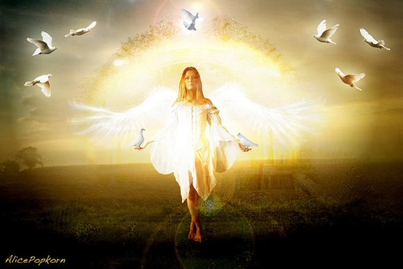 peace-angel-alice-popkorn