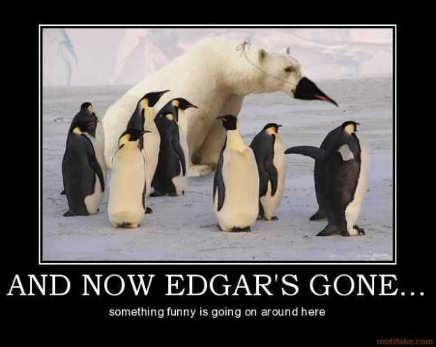 and-now-edgars-gone-penguin-polar-bear-disguise-demotivational-poster-1249129797