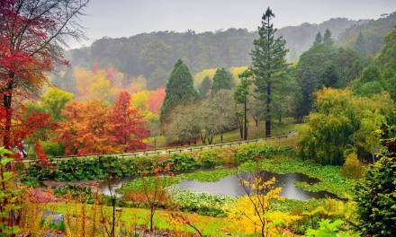 25 Things to do in the Adelaide Hills