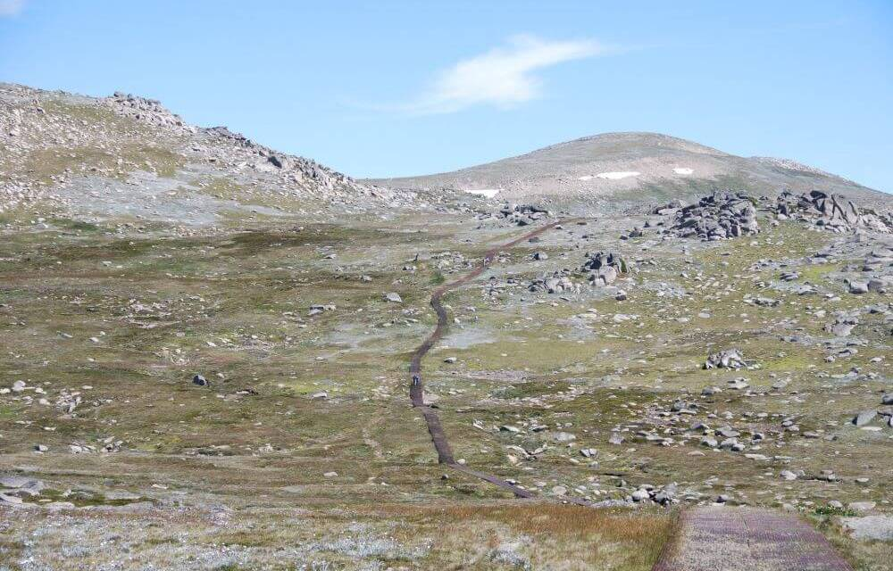 Mount Kosciuszko walk with Kids