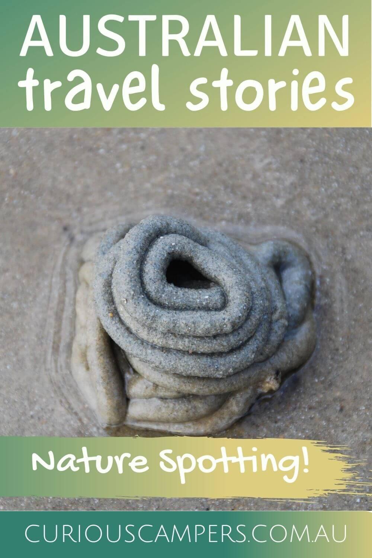 Nature Spotting