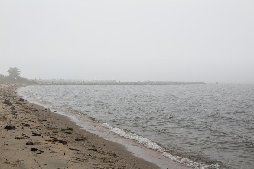 Curious Craig - Foggy-Matapeake-Beach.jpeg