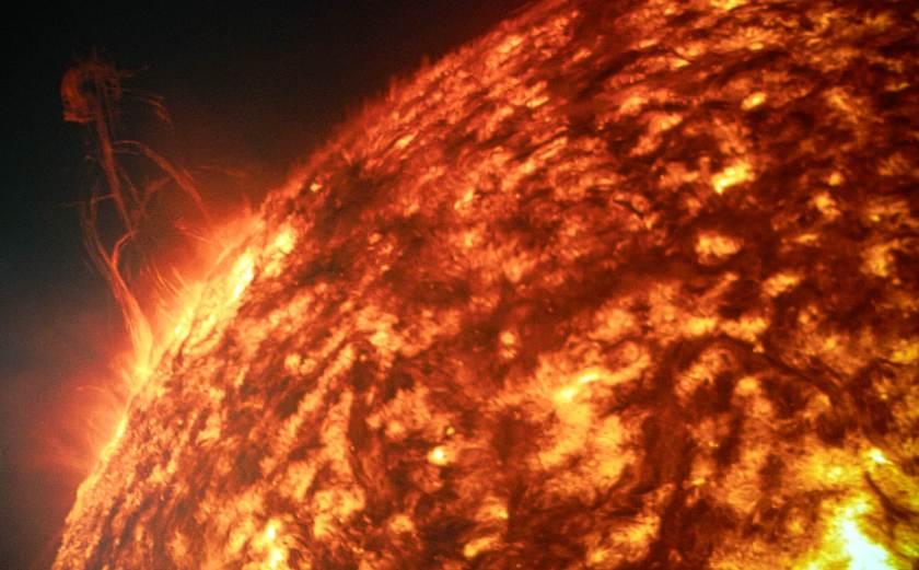 Curious Craig - Solarium-Flare.jpeg