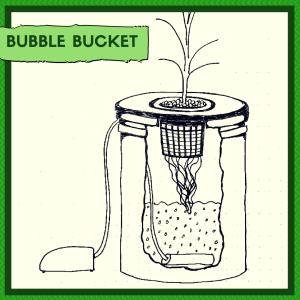 hydroponic indoor gardening method - Bubble Bucket