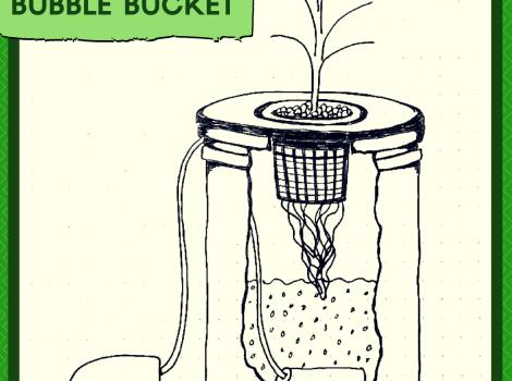 indoor gardening method - Bubble Bucket