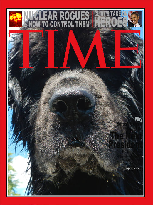 """Time's """"Person"""" of the Year"""