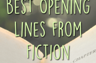 Best Opening Lines From Fiction
