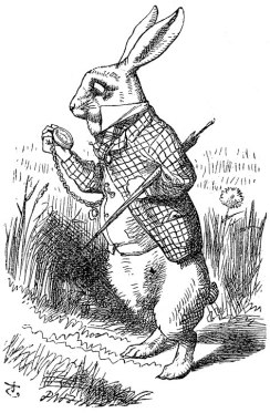 Illustration of the white rabbit wearing a waistcoat and holding a pocket-watch