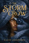 book cover for The Storm Crow